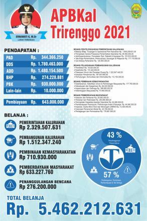 Info Grafis APBKal Trirenggo Tahun 2021